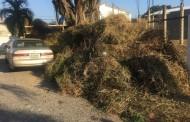 Brigadas Ayuntamiento DNexigen soborno para recoger basura