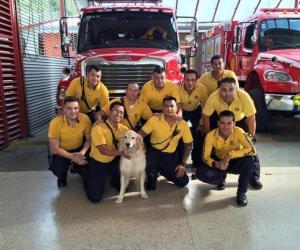 Jubilan perro bombero trabajó en terremoto de Haití