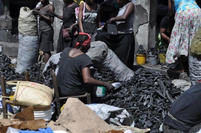 Domínguez Brito opina carbón ilegal debe ser perseguido como la cocaína