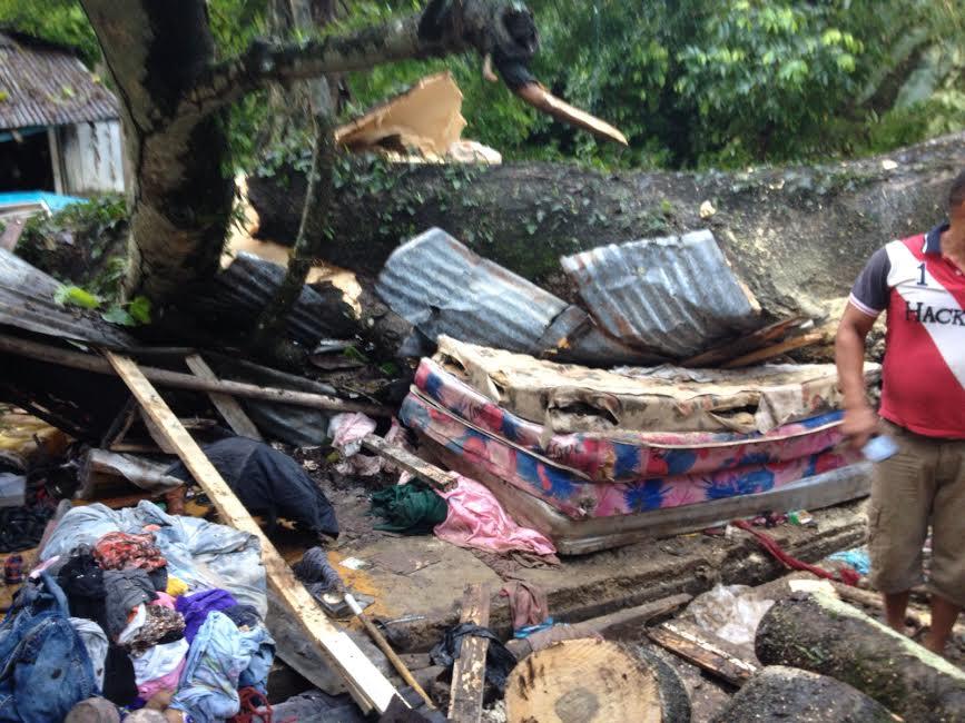 SALCEDO: Tres miembros de una misma familia mueren al caer árbol