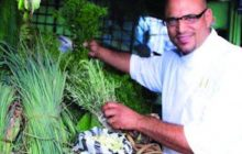ESPAÑA: Chef de RD estará en Gastrofestival Madrid 2017