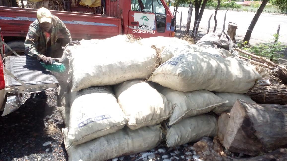 Ministerio Medio Ambiente ocupó miles de sacos de carbón este fin de semana