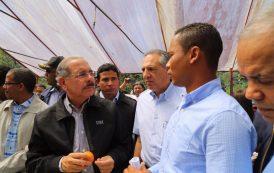 JARABACOA: Presidente Medina otorga financiamiento a productores de fresa