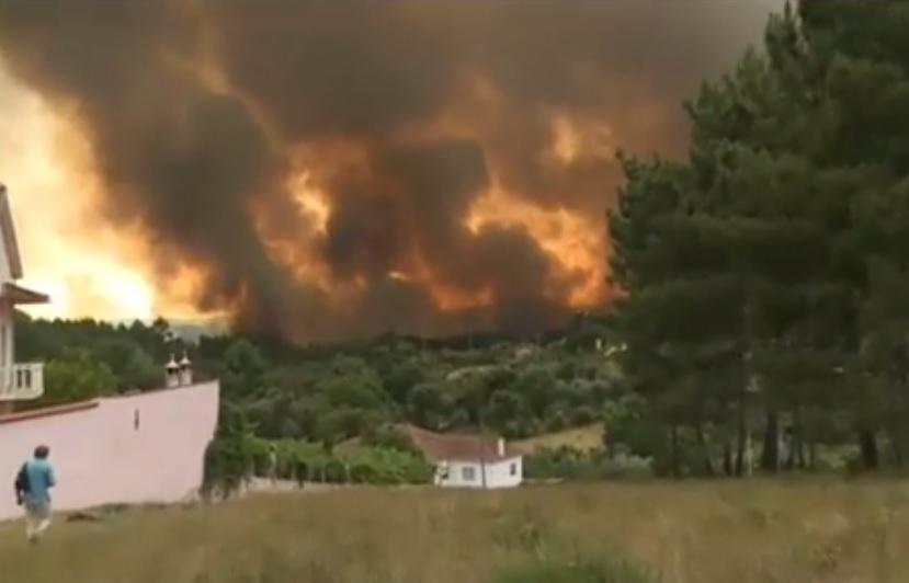 PORTUGAL: Más de medio centenar de muertos, 54 heridos en incendio forestal