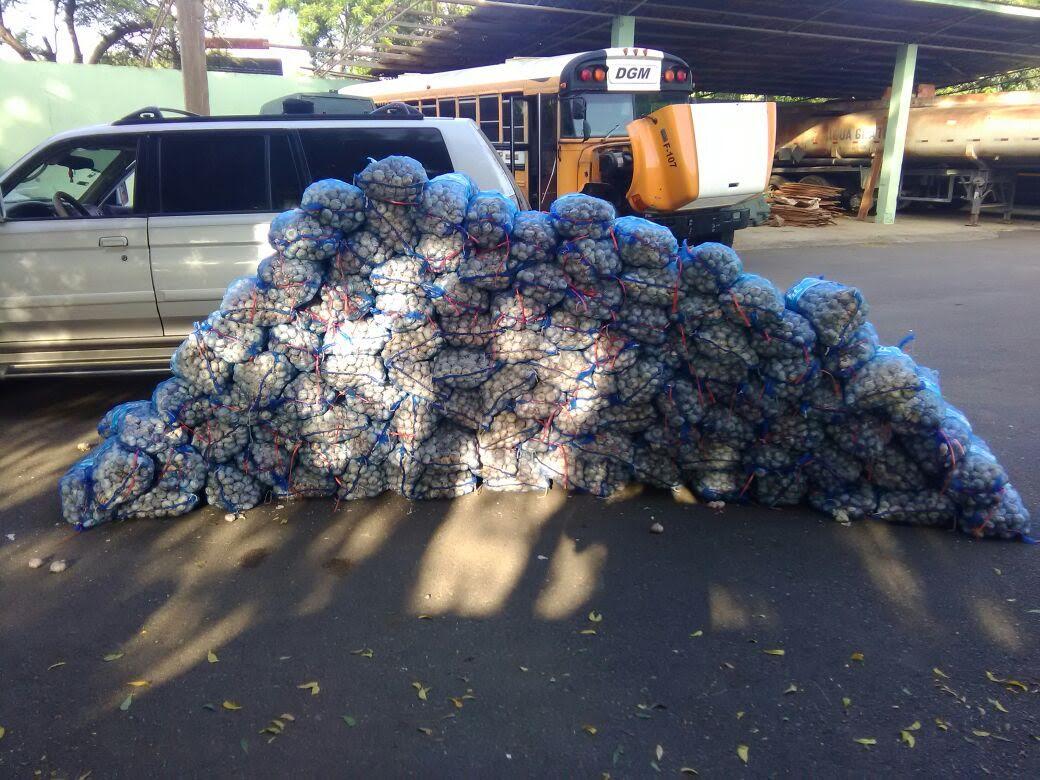 AZUA: Ejército decomisa ajo contrabando y recupera vehículos