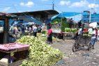 Plátanos y pollo suben de precio debido a daños de huracanes