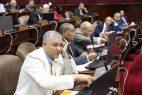 La Cámara de Diputados anuncia miembros de comisión estudiará Ley de Partidos