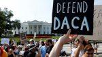 EEUU: Crece movimiento legislativo salvar DACA