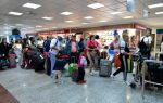 Terminales Aerodom recibirán estas navidades a unos 445 mil viajeros