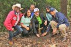 LA VEGA: EDENORTE reforesta donde produjo poda