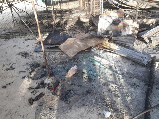 Incendio arrasa con varios negocios de comida en la playa de Boca Chica