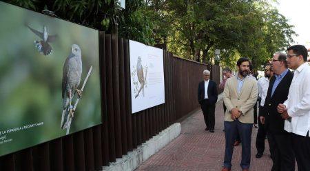 INICIA crea conciencia aves endémicas en exposición fotos