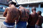 """EU: La Casa Blanca advierte sobre """"animales violentos"""" de la MS-13"""
