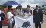Celebran que bancos europeos no continuaran préstamo  para Punta Catalina