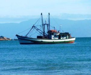 Bahamas detiene 46 dominicanos por pescar ilegalmente