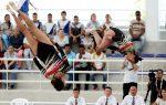 R.Dominicana participará en Panamericano de trampolín