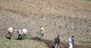 Productores desalojados de Valle Nuevo amenazan con volver a ocupar el lugar