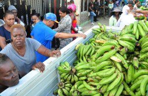 INESPRE venderá más de un millón de plátanos a 2.50 pesos en toda la RD