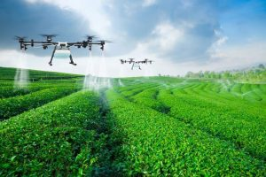 Afirma modelos de agricultura y ganadería de precisión duplicarían la producción en 10 años