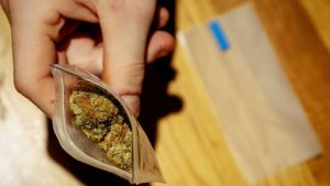 Nueva York despenaliza posesión de marihuana tras fracasar legalización