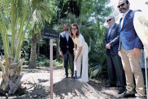 MADRID: Inauguran exposición de la palma dominicana