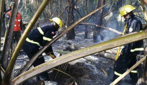 El Ejército envía apoyo a los bomberos combaten incendio forestal en Bávaro