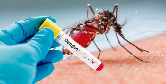 Salud Pública coloca en alerta a 27 provincias ante el brote de dengue