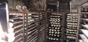 Pro Consumidor cierra panaderías por heces fecales, suciedad y plagas
