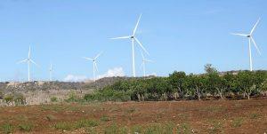 PERAVIA: Presidente Medina asiste inauguración de un parque eólico