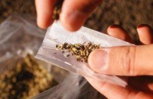 Nueva York rectifica por «injustas» las condenas por marihuana