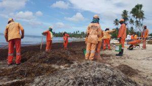 Brigadas MOPC retiran toneladas de sargazos en playas de la región Este