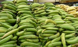 Ministro advierte a productores que importará plátano si suben su precio