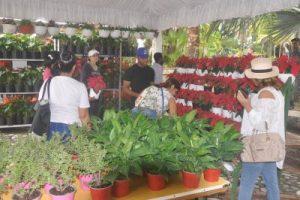 Jardín Botánico inaugura Festival Nacional de Plantas y Flores