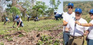 Empleados de AFP Popular reforestan localidad de Los Montones