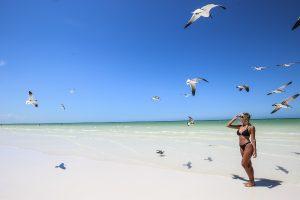 MEXICO: Están libres de sargazo 18 playas de Quintana Roo