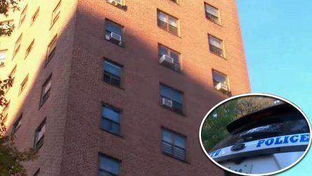 Muere niño dominicano cayó de un noveno piso en el Bronx