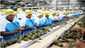 Bajo nivel actividad económica, principal lastre para competitividad