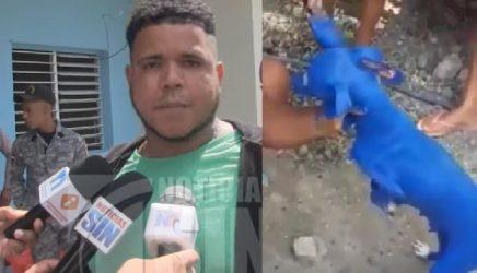 AZUA: Se entrega hombre captado en video pintando de azul a un perro