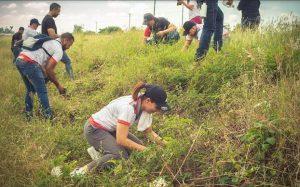 Instituciones locales realizan jornada de reforestación en Tamboril
