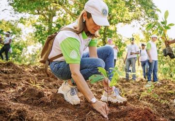 MONTE PLATA: Grupo SID realiza jornada de reforestación en el Mamey
