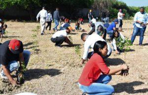 CORAASAN y vecinos de Cienfuegos realizan jornada de reforestación