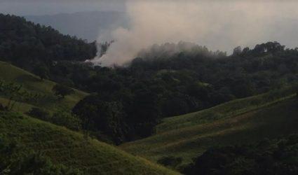 Academia Ciencias denuncia desastre ecológico en Jarabacoa por incendio