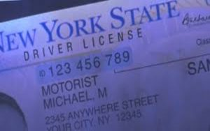 Trump presiona contra licencias de conducir para indocumentados en NY