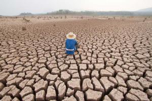 Solo 1 de cada 5 países tiene estrategias ante cambio climático