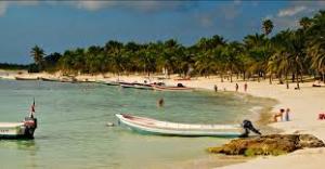 Microplásticos degradan ecologia zona del Caribe de México