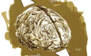 Conceptos modernos de neurociencia y educación
