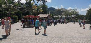 Autoridades dicen llegan miles de turistas; no hay cruceros con coronavirus