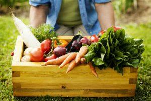 Denuncian medidas contra COVID-16 perjudican producción agropecuaria