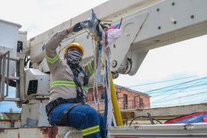 Dicen las chichiguas siguen afectando elsistema de transmisión eléctrico
