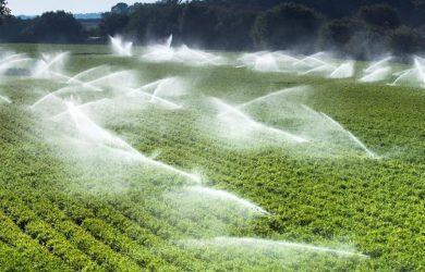 Pronostican grave crisis de agua y de alimentos en RD